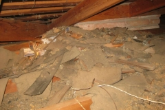 property-damaged-by-rats-4